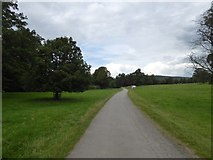 SK2571 : Path to Baslow through Chatsworth Park by David Smith