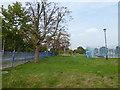 TQ3499 : Elsinge Golden Jubilee Park by Marathon