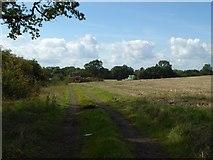 SO9271 : Field off Bungay Lane by Philip Halling