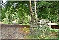J4877 : Old gatepost, Clandeboye Wood, Bangor (September 2017) by Albert Bridge