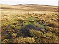 SX5877 : Moorland on Black Dunghill : Week 39