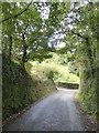 SX4464 : Steep hill to Tuckham Bridge by David Smith