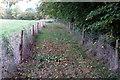 SP9752 : Bridleway to Stevington by Philip Jeffrey