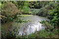 SP9752 : Pond in the woodland by the bridleway by Philip Jeffrey