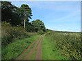TF8945 : Norfolk Coast Path, Holkham Meals by Hugh Venables