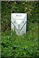 TF8113 : Milestone on the A1065 Main Road at Bartholomew's Hills by Geographer
