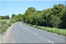 TL5337 : Newport Rd by N Chadwick