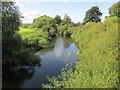 SE4366 : River  Swale  downstream  from  Myton  Bridge by Martin Dawes