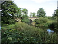 SE4370 : Disused  railway bridge  over  River  Swale by Martin Dawes