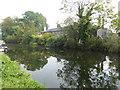 TQ3799 : Cottages seen across the River Lee Navigation by Marathon