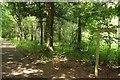 SX8375 : Track at Stover by Derek Harper