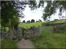 SK2276 : Squeeze stile, on the path from Eyam to Stoney Middleton by David Smith