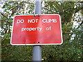 ST6469 : It's mine! Get off! by Neil Owen