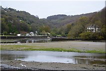 SX2553 : River East Looe and River West Looe by N Chadwick