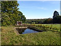 TQ6835 : Outdoor Swimming Pool, Scotney Castle by PAUL FARMER