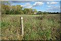 TQ0080 : Waymark in the Long Grass by Des Blenkinsopp