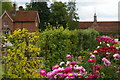 TL5238 : Kitchen garden area, Audley End by Christopher Hilton
