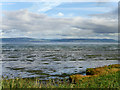 C5522 : Lough Foyle Shore by David Dixon