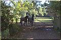 SU9384 : Field gate off Dorney Wood Road by Robert Eva
