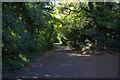 SU9384 : Green Lane, Burnham by Robert Eva