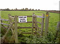 ST6562 : None to be seen by Neil Owen