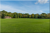 TQ4223 : Sheffield Park cricket ground by Ian Capper