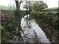 SD5397 : Dry Lane! by David Brown