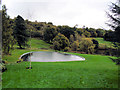 TQ4551 : Small lake at Chartwell by Paul Gillett