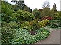 TQ4551 : Chartwell House Gardens by Paul Gillett
