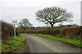TQ3949 : Passing place, Popes Lane by Robin Webster