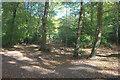 SU9585 : Gate off Beeches Lane by Robert Eva