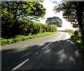 SO3416 : Old Ross Road beyond Llanddewi Skirrid, Monmouthshire by Jaggery