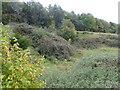 TR0052 : Old quarry near Broomfield Farm by Marathon