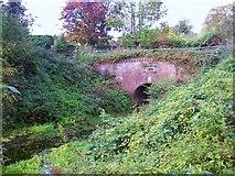 SU7151 : Greywell Canal Tunnel by Len Williams