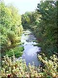 SU7151 : Basingstoke Canal, Greywell by Len Williams