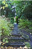 SJ7886 : A path in Halecroft Park by Ian Greig