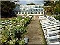 TR3750 : Kitchen garden, Walmer Castle by Philip Halling