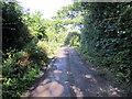 SJ3378 : Track near Willaston by Jeff Buck