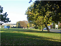 TR3752 : Victoria Park, Deal by Robin Webster