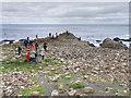 C9444 : Causeway Coast, The Giant's Causeway by David Dixon