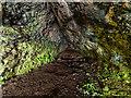 NH6852 : Cave below cliffs at Craigiehowe by valenta