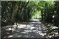 SU8496 : Huntshill Lane by N Chadwick