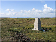 SD8484 : Trig point of Dodd Fell Hill by Trevor Littlewood