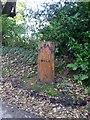H6500 : Southern end of Skeagh Golden Mile by Oliver Dixon