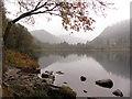 T1196 : Lower lake at Glendalough : Week 42