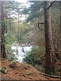 J3629 : Waterfall on the Glen River below Craignagore Bridge by Eric Jones