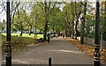 SK5903 : New Walk in Leicester by Mat Fascione