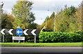 NO2600 : Something lurks in the bushes! by Bill Kasman