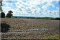 SP9848 : Bare field by N Chadwick