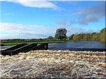 NZ2513 : Weir at Broken Scar by Gordon Hatton
